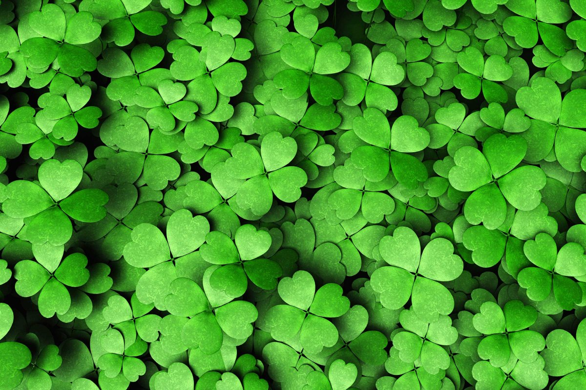 03-false-st-patricks-day-facts-green.jpg