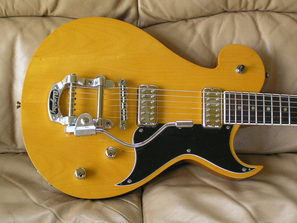 Bigsby_with B5.JPG