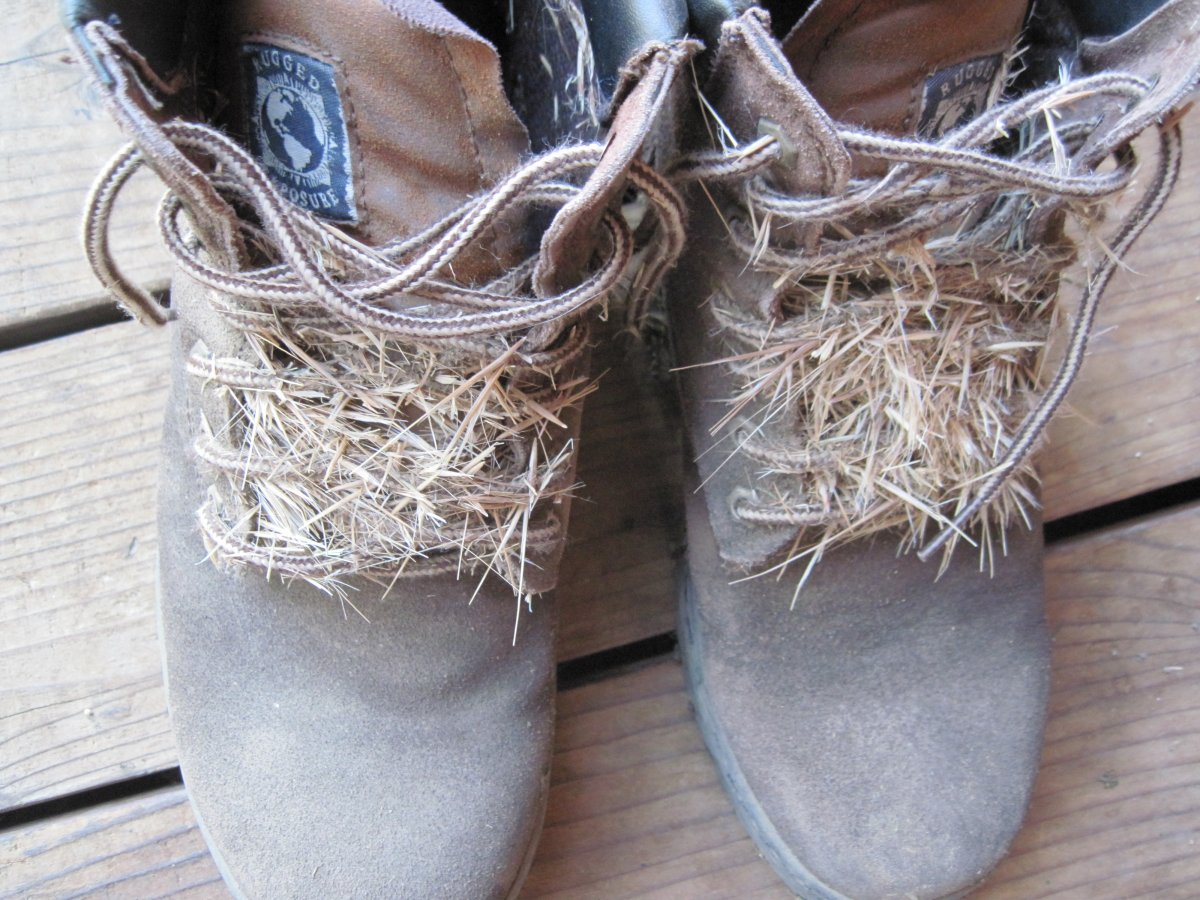 foxtail shoes.JPG