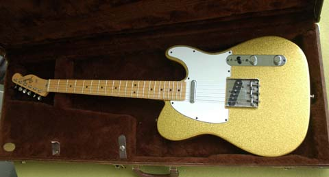 gold tele whole guitar small size.jpg