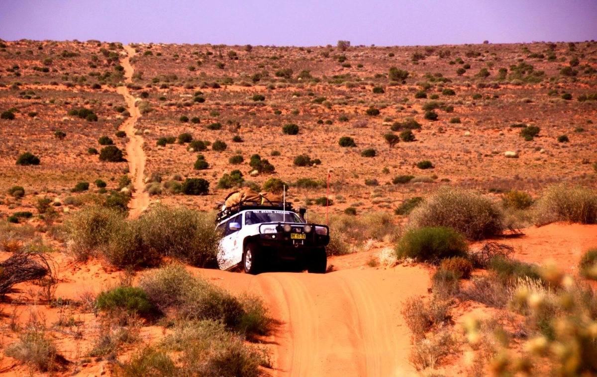 Simpson-Desert-safari-3 (1).jpg