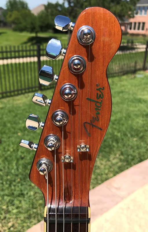 Spalted 13 - Small.jpg