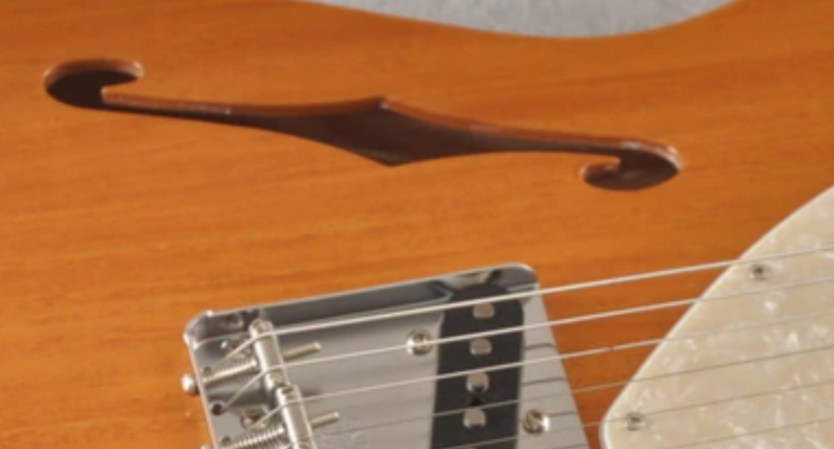 thinline fender.png