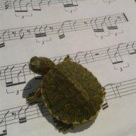 oriolmusic