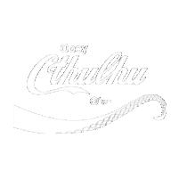 CavalierX