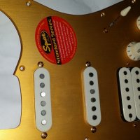 Gold Anodized STRAT HSS Pickguard+Back Cover Loaded Alnico pickups