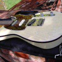 1999 American Deluxe Telecaster White Ash $1,100.00
