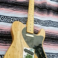 spalted maple chambered  tele