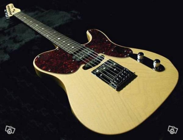 robin guitars telecaster guitar forum. Black Bedroom Furniture Sets. Home Design Ideas