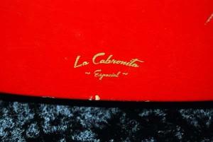 LCE-logo